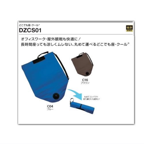 DZCS01